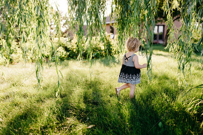 Little girl walking in tall grass under willow tree at sunset