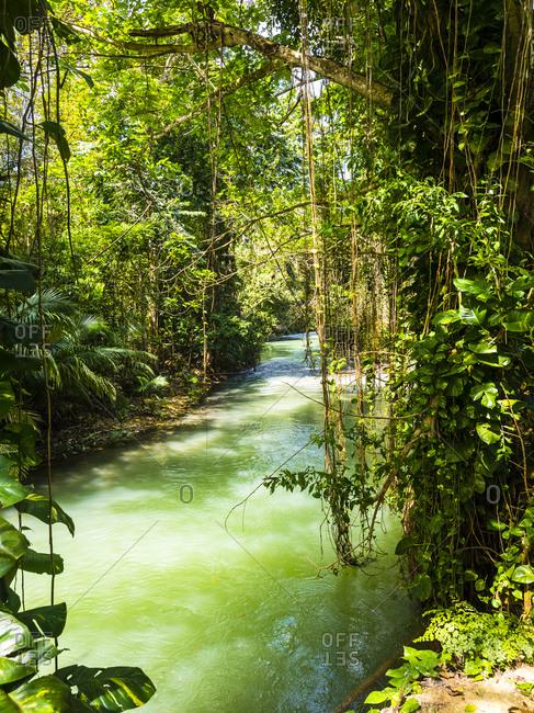 Jamaica- Region Montego Bay; Martha Brae river