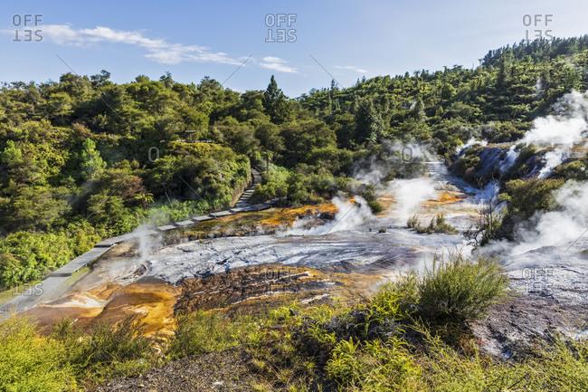 Cascade Terrace- Hot Springs Algae and Terracettes and Emerald Terrace- Orakei Korako Geothermal Park- Taupo Volcanic Zone- North Island- New Zealand