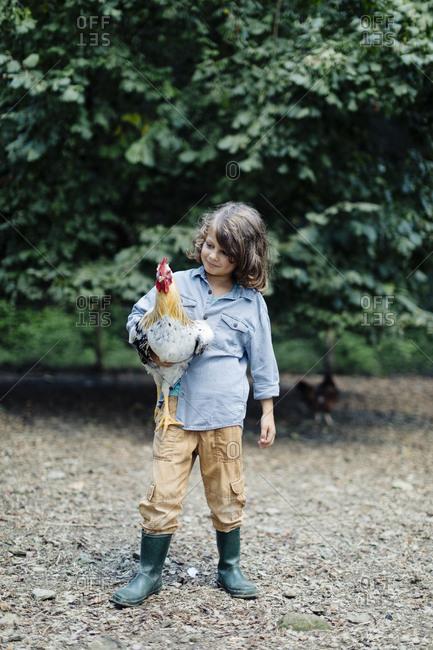 Boy holding chicken on an organic farm