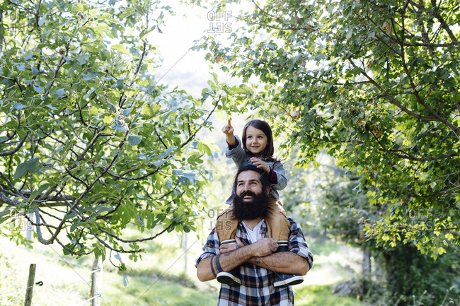 Happy father with kid on his shoulders in an orchard