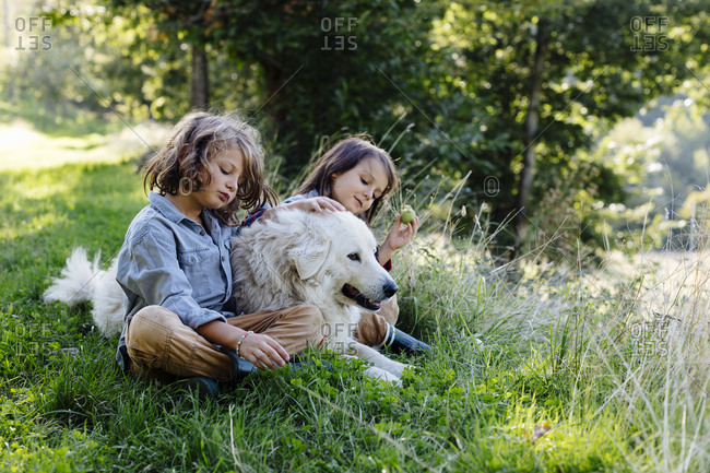 Two kids relaxing with dog on a meadow