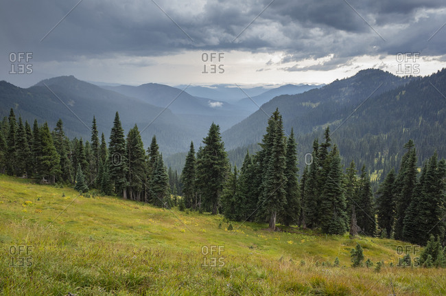 Storm clouds over Goat Rocks Wilderness, lush alpine meadow in foreground, Gifford Pinchot National Forest, Washington
