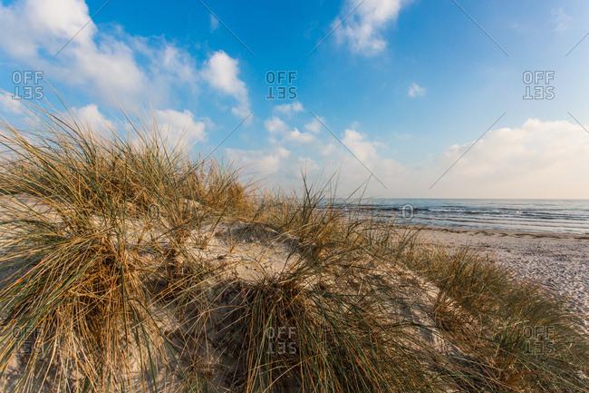 On the beach of juliusruh, baltic sea, Rugen, mecklenburg-west pomerania, Germany