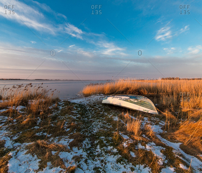February 11, 2017: Reed on the shore in frost and sundown, Rugen, mecklenburg-west pomerania, Germany