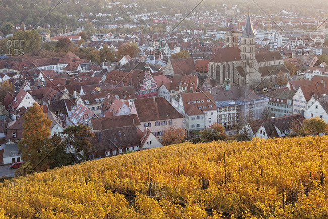 View from the castle to the old town with stadtkirche st. dionys (church) and town hall, esslingen am neckar, baden wurttemberg, Germany
