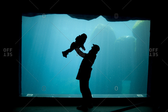 Father playing with son in the zoo hagenbeck, silhouette in front of aquarium