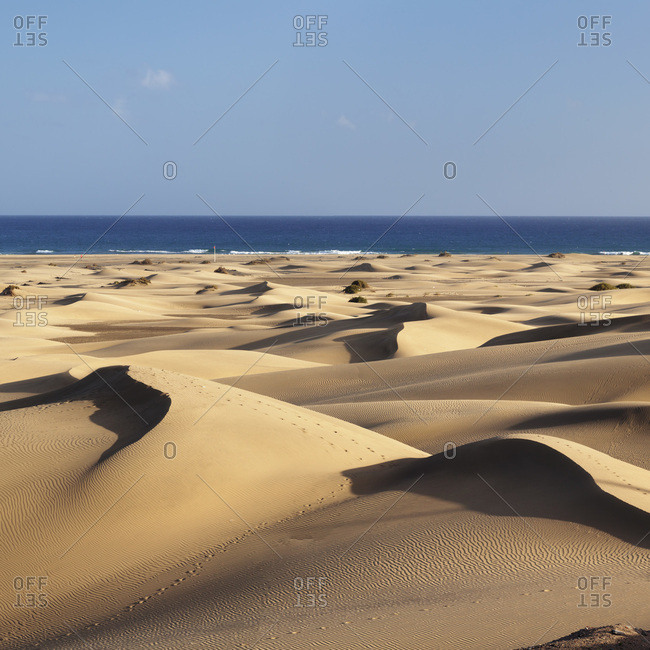 Dunes of maspalomas, maspalomas, gran canaria, canary islands, spain