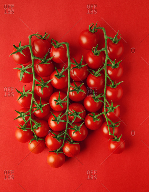 Overhead view of tomato on red background.