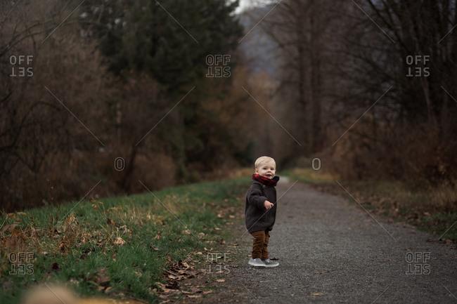 Toddler walking on rural path in autumn