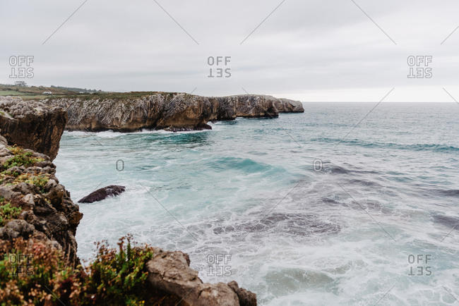 Rocky overgrown of plants seashore with waves and cloudy sky