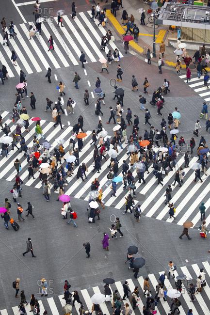 Tokyo, Japan - December 1, 2015: Pedestrians crossing street in the rain in the Shibuya ward of Tokyo