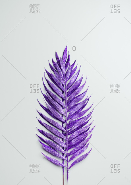 Purple painted decorative leaves