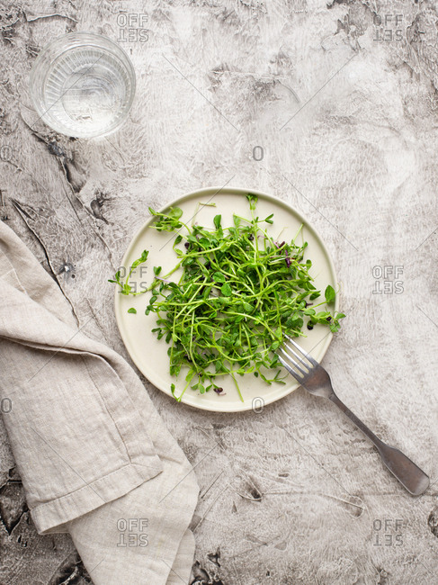 Vegetable salad with green peas sprouts and glass of water