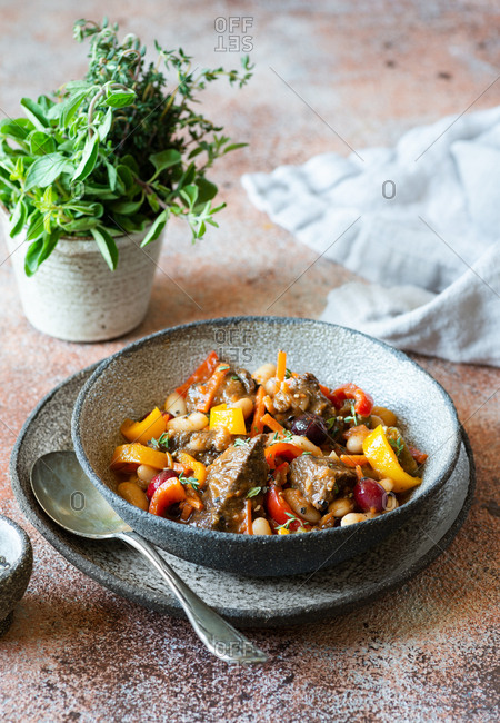 Beef stew with carrot, peppers, beans and cranberries beside herb plant