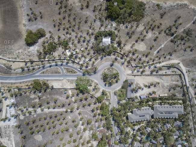 Aerial view of road and house in palm grove
