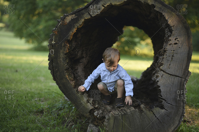 Boy playing in hollow of tree trunk at park