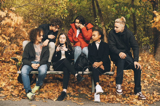Multi-ethnic friends looking at teenage girl using mobile phone while sitting on bench at park
