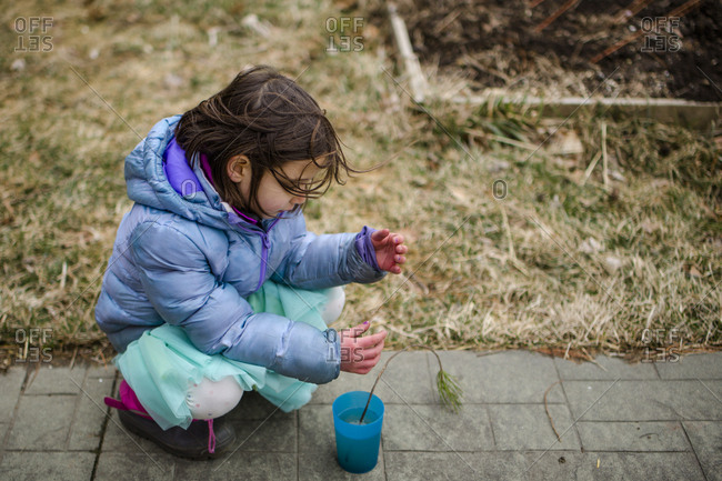 A small child tenderly places a tiny tree sapling in a cup of water
