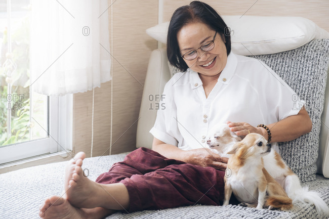 Happy senior woman with her dogs on couch inside of her house.