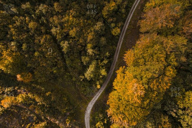 Austria-Lower Austria- Aerial view of gravel road in autumn forest
