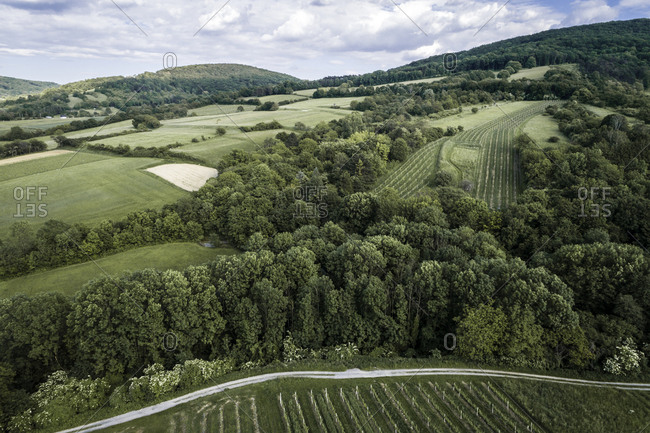 Austria- Lower Austria- Aerial view of green forested hills and vineyards