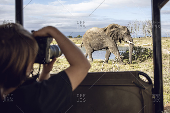 Back view of girl taking photo of an elephant- Inverdoorn game Reserve- Breede River DC- South Africa