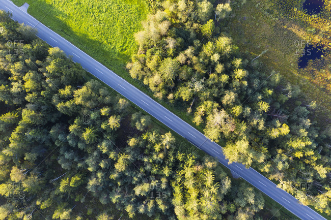 Germany- Bavaria- Konigsdorf- Aerial view of country road through Konigsdorfer Moor