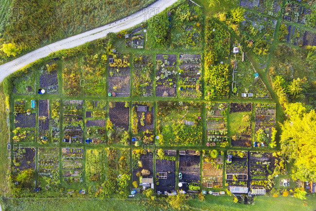 Germany- Bavaria- Geretsried- Aerial view of rows of green countryside gardens