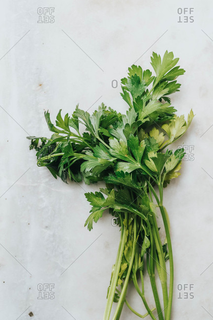 Overhead view of parsley on white surface