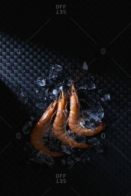 Prawns among ice on textured black background