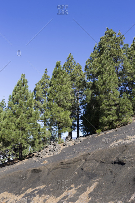 the dark lava sand land of Llano del Jable, behind the Caldera de Taburiente, La Palma, Canary islands, Spain