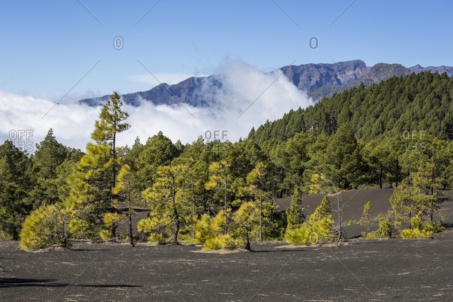 Gulch Barranco de San Juan, La Palma, Canary islands, Spain