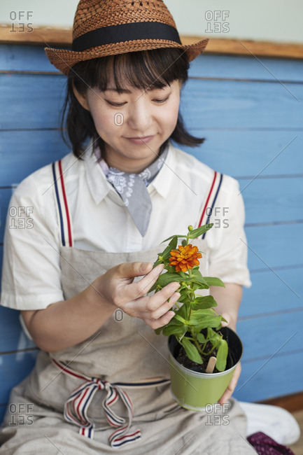 Japanese woman sitting outside a farm shop, planting flowers into flower pots.