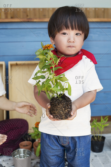 Japanese boy standing outside a farm shop, holding flower, looking at camera.