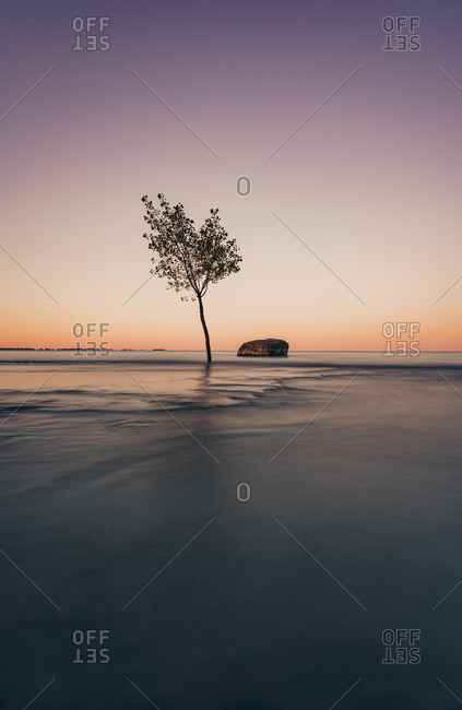 Long exposure of lone tree and a rock in the water on Lake Ontario.