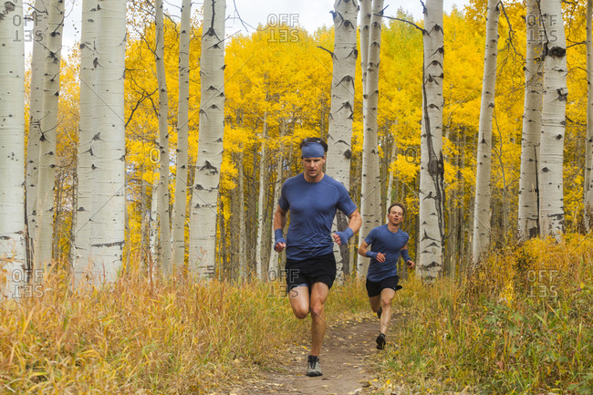 Men trail run through aspen forest with fall color in Vail, Colorado