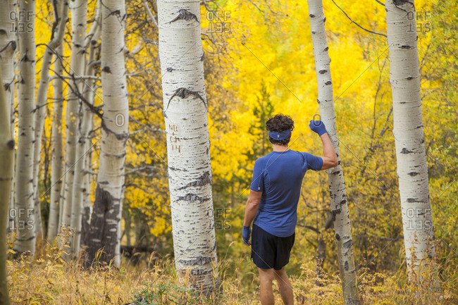 Man on trail run leans on aspen with fall colors in Vail, Colorado