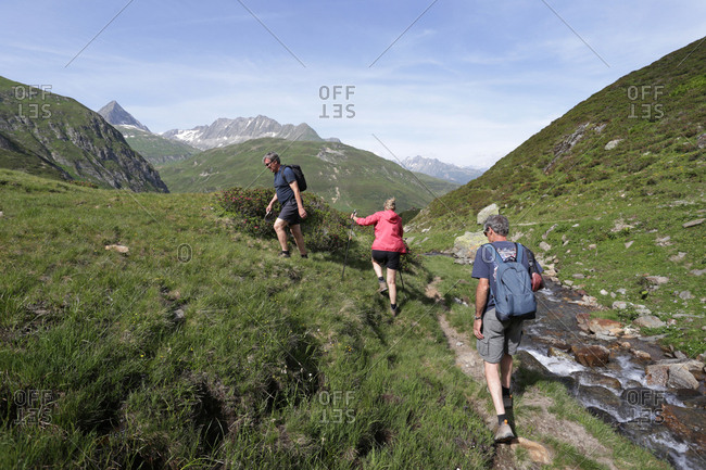 A group of adult friends hiking along a trail in the Swiss Alps