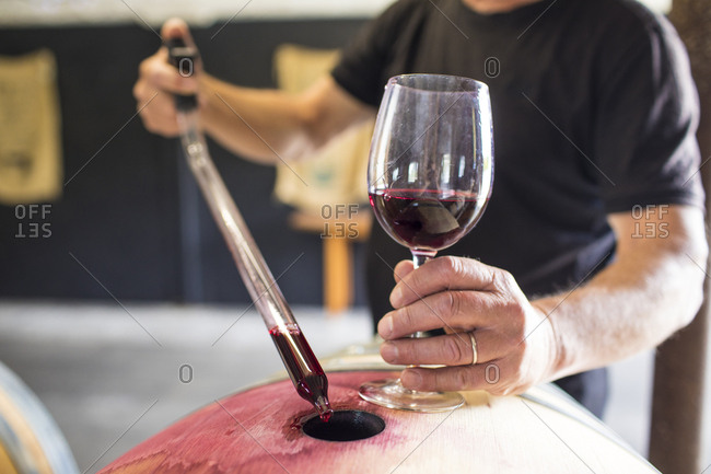 sommelier extracts wine from a barrel using a pipette
