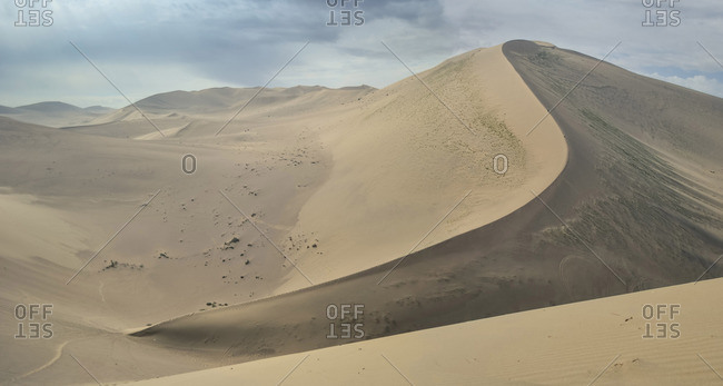 landscape of large desert dune with sinuous shape crest in China