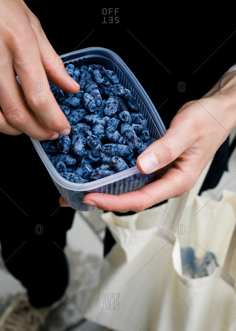 Person holding container of fresh blue honeysuckle
