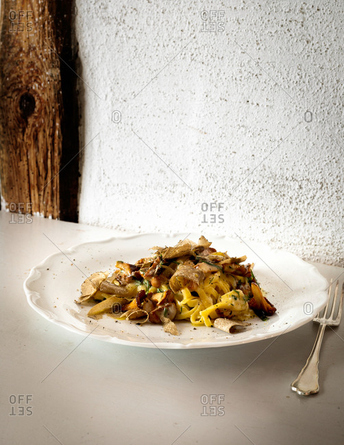 Gourmet pasta dish in front of white textured wall