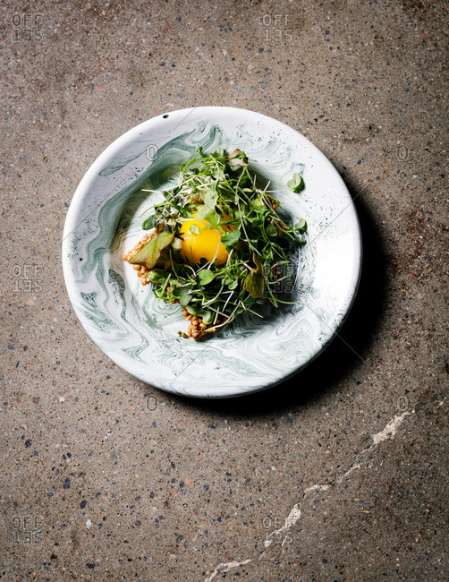 Gourmet dish with egg and microgreens from above
