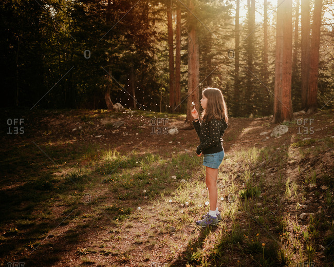 Side view of a young girl blowing dandelions in a forest