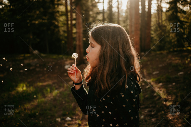 Profile view of girl blowing dandelions