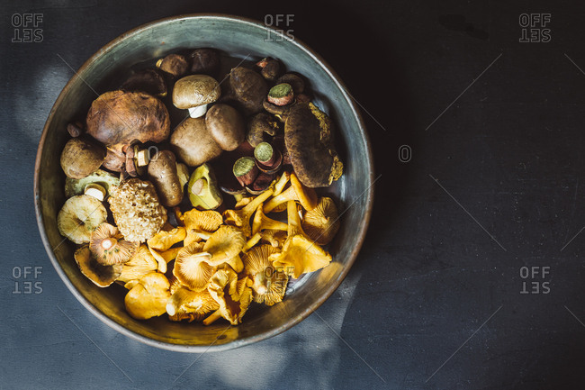 Directly above shot of various mushrooms in container on table