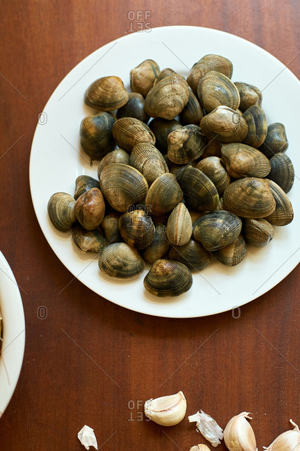 Raw clams on a plate on wooden table.