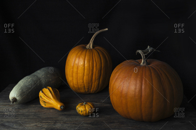 Pumpkin Still Life On A Wooden Rustic Table