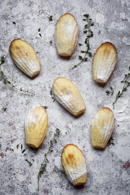 Lemon And Thyme Madeleines On A Plate With Thyme Sprigs